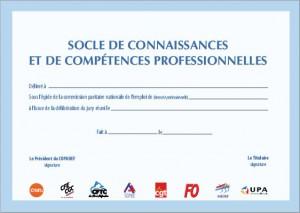 Socle commun de connaissances et de compétences professionnelles (S3CP)