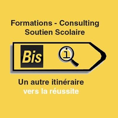 BIS-Q.I.