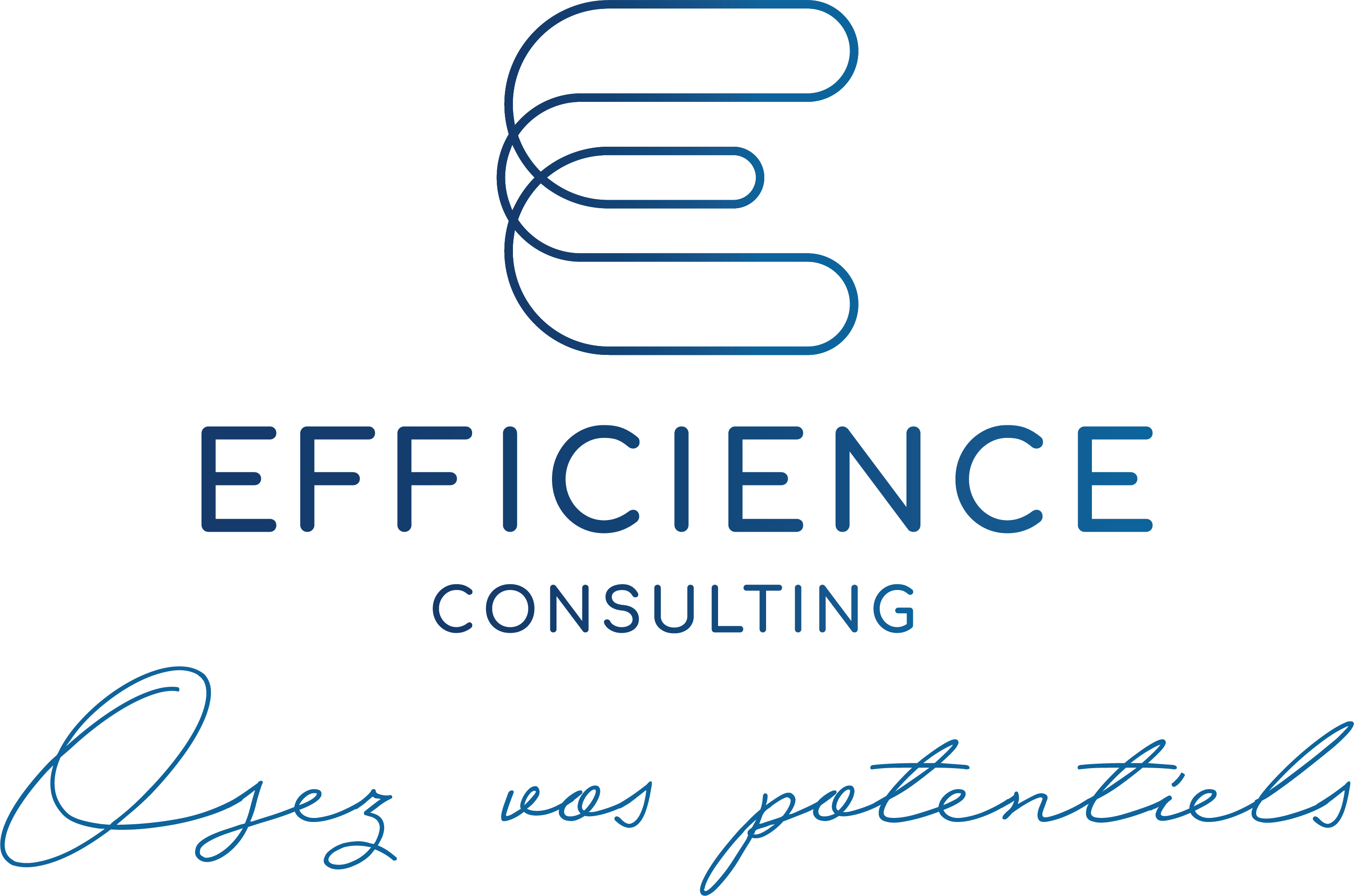 EFFICIENCE CONSULTING - Paris 8ème (75)
