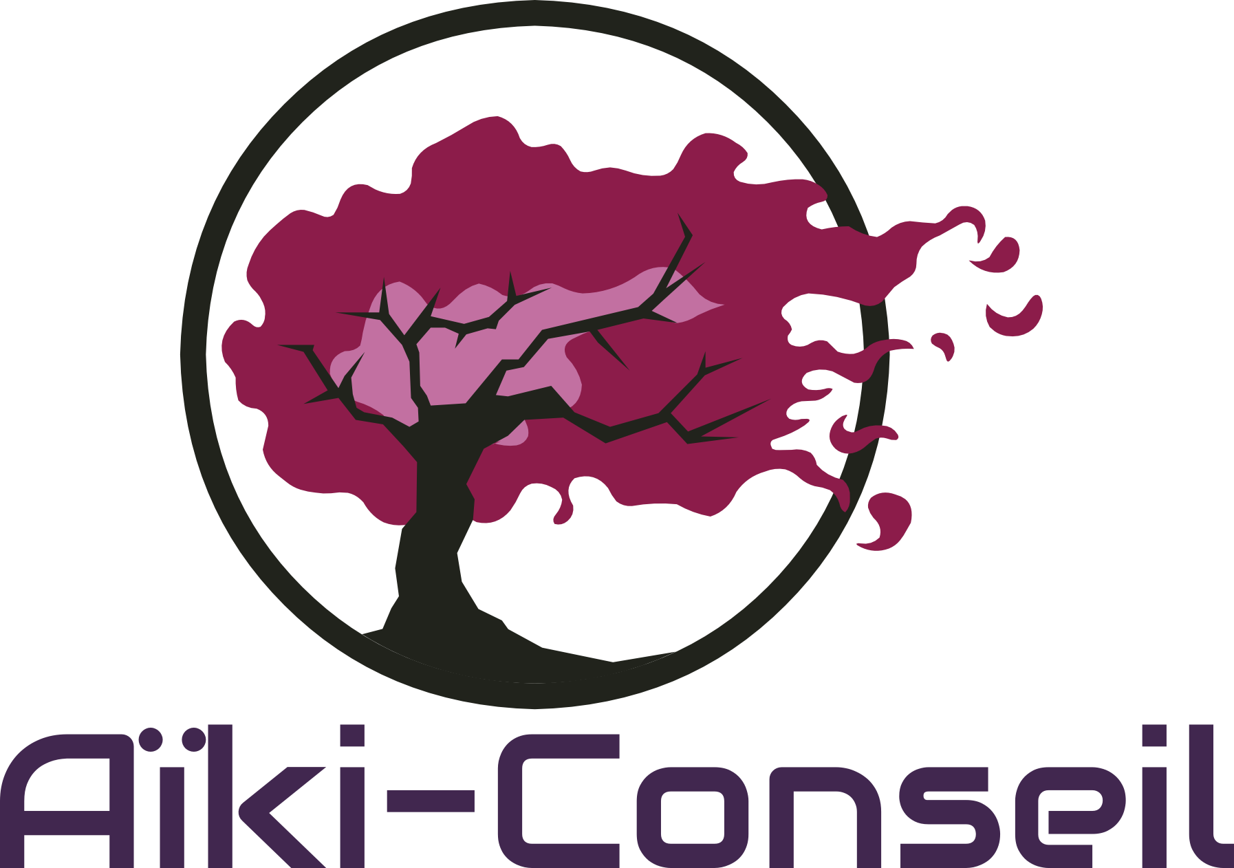 AIKI-CONSEIL