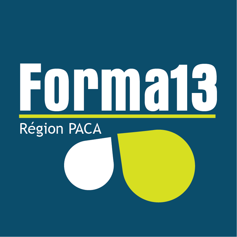 FORMA13