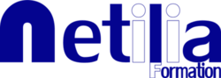 Netilia Formation